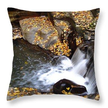 Watkins Glen Ny 2 Throw Pillow by Vilas Malankar