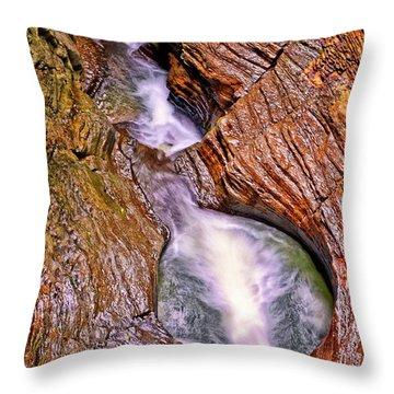Watkins Glen - Rainbow Falls 005 Throw Pillow