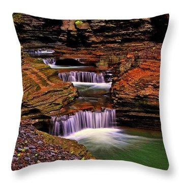 Watkins Glen State Park 014 Throw Pillow