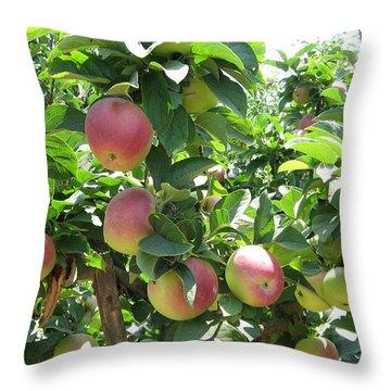 Watsonville Apples Throw Pillow