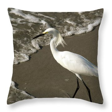 Wave And Snowy Throw Pillow