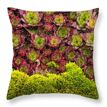 Wave Of Change Throw Pillow