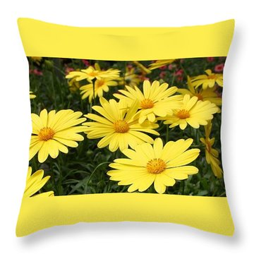 Waves Of Yellow Daisies Throw Pillow