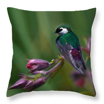 Wavey Perch Throw Pillow
