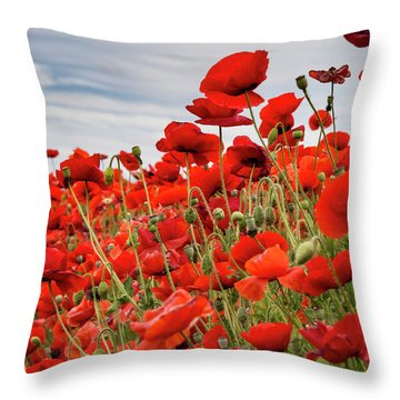 Waving Red Poppies Throw Pillow