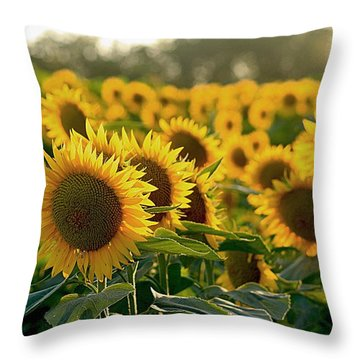 Waving Sunflowers In A Field Throw Pillow