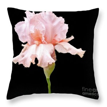 Wavy Pink Iris Throw Pillow