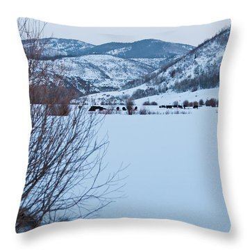 Throw Pillow featuring the photograph Waxing Super Moon Over Salt Crk by Daniel Hebard