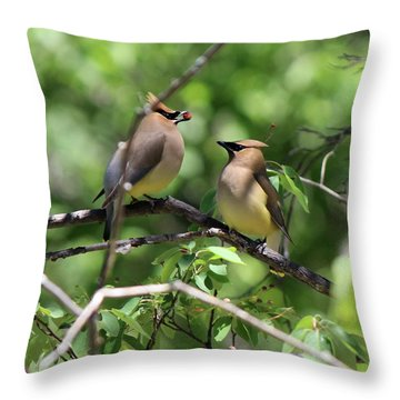 Waxwing Socialism Throw Pillow
