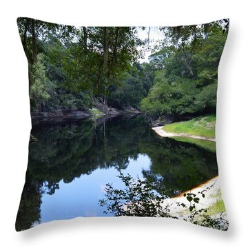 Way Down Upon The Suwannee River Throw Pillow by Warren Thompson