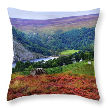 Throw Pillow featuring the photograph Way Home. Wicklow. Ireland by Jenny Rainbow