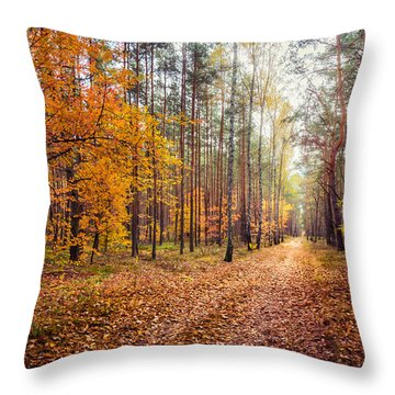 Way Of Light Throw Pillow