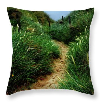 Way Through The Dunes Throw Pillow