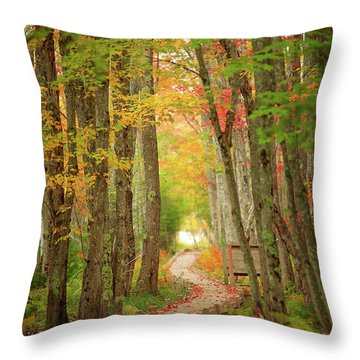 Throw Pillow featuring the photograph Way To Sieur De Monts  by Emmanuel Panagiotakis