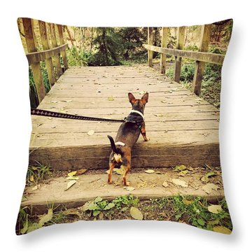 We All Have Our Paths Throw Pillow