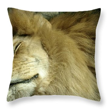 We All Like To Pass As Cats Throw Pillow