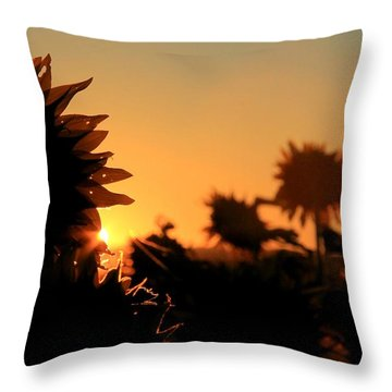 Throw Pillow featuring the photograph We Are Sunflowers by Chris Berry