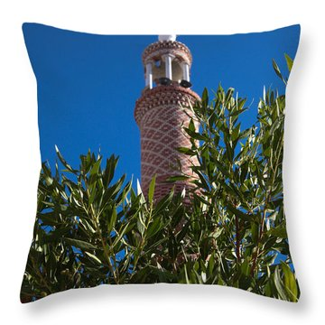 Throw Pillow featuring the photograph We Both Head Towards The Light  by Jez C Self