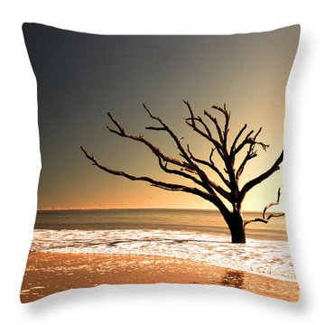 Throw Pillow featuring the photograph We Can Be Heroes by Dana DiPasquale