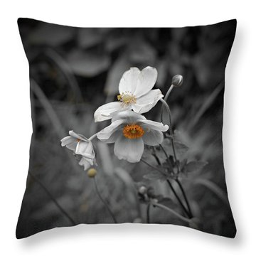 We Fade To Grey 4 Throw Pillow