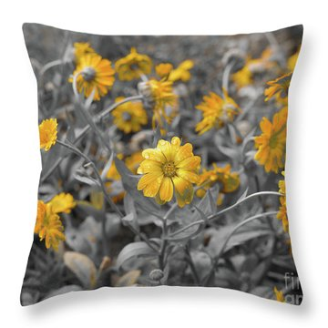 We Fade To Grey Throw Pillow