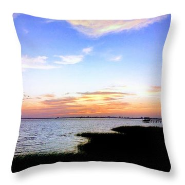 We Have Arrived Throw Pillow