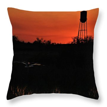 Throw Pillow featuring the photograph We Have Lift Off by Laura Ragland
