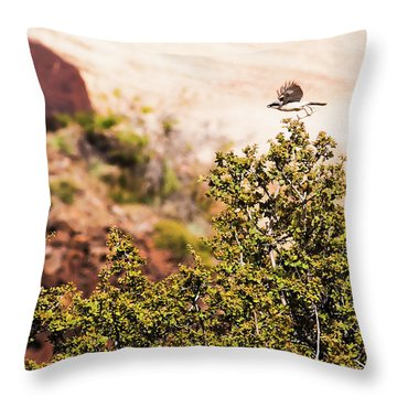 We Have Takeoff Throw Pillow by Onyonet  Photo Studios