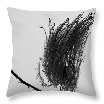 We Lifted Us Throw Pillow