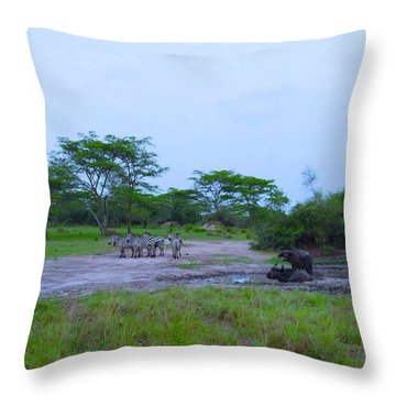 Exploramum Throw Pillows