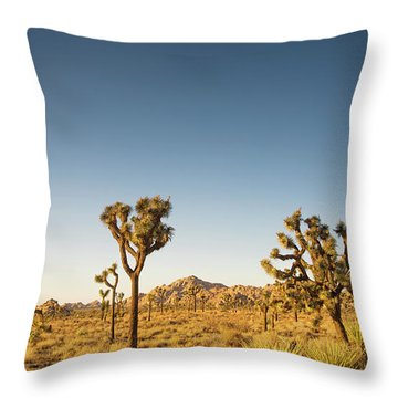 We Love This Sunset Throw Pillow