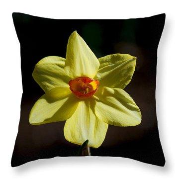 #wearealleternalstars Throw Pillow by Becky Furgason