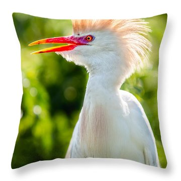 Wearing His Colors Throw Pillow by Christopher Holmes