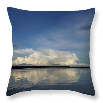 Weather From Tampa Bay 871 Throw Pillow