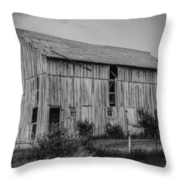 Weather Proof Throw Pillow by Ray Congrove