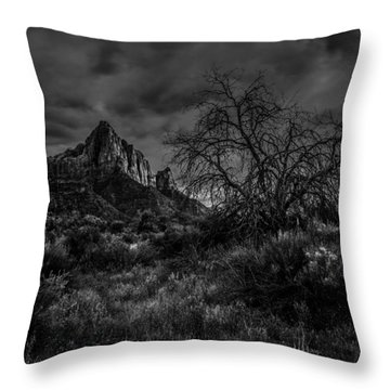 Weather Tree Zion National Park Throw Pillow