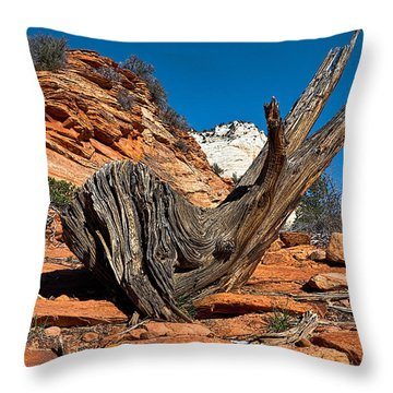 Weathered Check Throw Pillow by Christopher Holmes