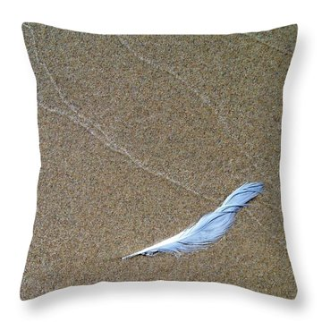 Weathered Feather  Throw Pillow by Michelle Calkins