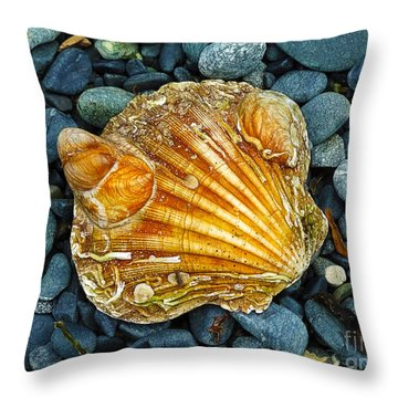 Weathered Scallop Shell Throw Pillow