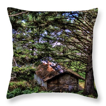 Weathered Shed Throw Pillow by David Patterson
