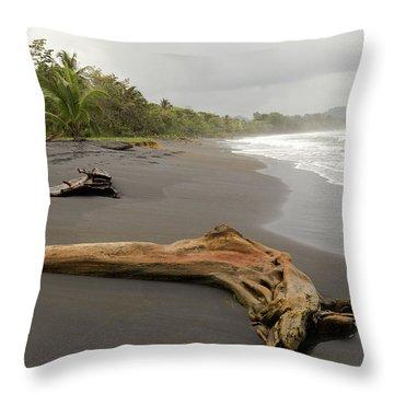Weathered Tree On Costa Rica Beach Throw Pillow