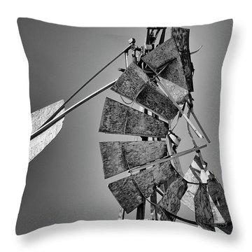 Weathered Vane Throw Pillow