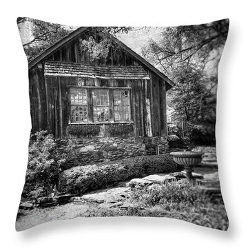 Weathered With Time Throw Pillow