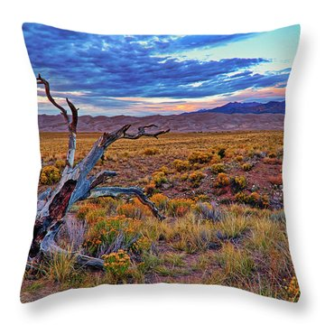 Throw Pillow featuring the photograph Weathered Wood And Dunes - Great Sand Dunes - Colorado by Jason Politte