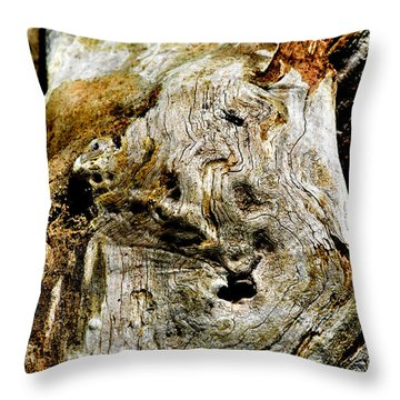 Weathered Wood Throw Pillow by Debbie Portwood