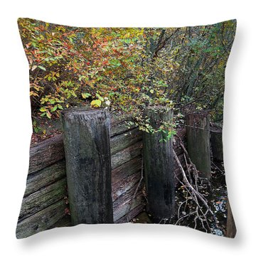 Weathered Wood In Autumn Throw Pillow