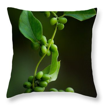 Weaving Vines Throw Pillow by Shelby  Young