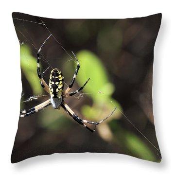 Web Builder Throw Pillow
