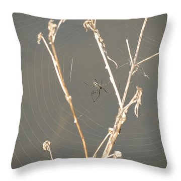 Web Of Wonder Throw Pillow