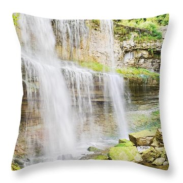 Webster Falls Throw Pillow